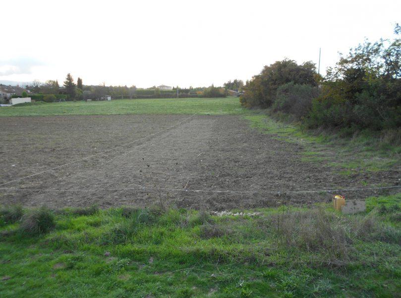 Pourquoi et comment régénérer les sols ?