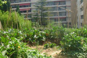 ville-jardinee