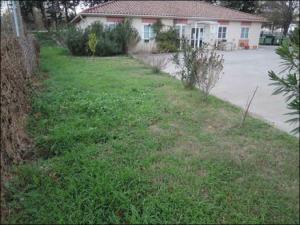 etat-initial-jardin-nouveau
