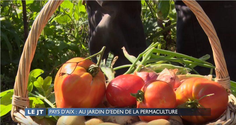 """Un reportage de PROVENCE AZUR TV :  """"Pays d'Aix : Au jardin d'Eden de la permaculture """""""